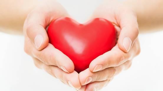 Simbolo di cuore, Mano umana, Amore, Tenere, Consolare, mani, Fondazione  Ticino cuore