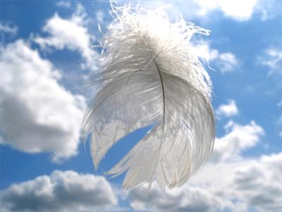 Lettura dei TAROCCHI DEGLI ANGELI e delle CARTE ORACOLARI