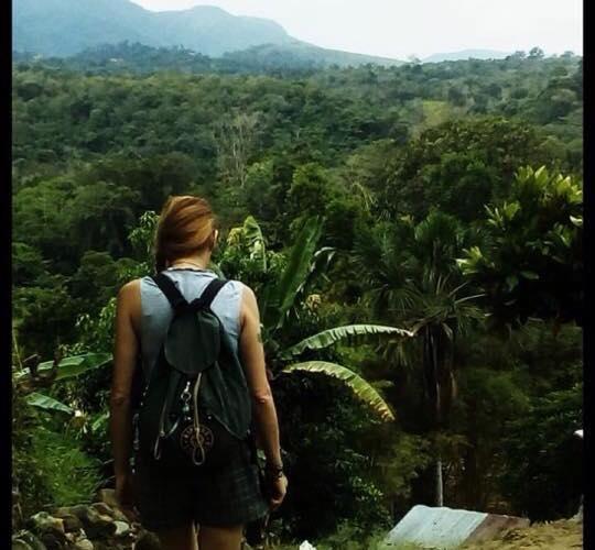 Incontro con Piante Sacre: racconto di un viaggio iniziatico
