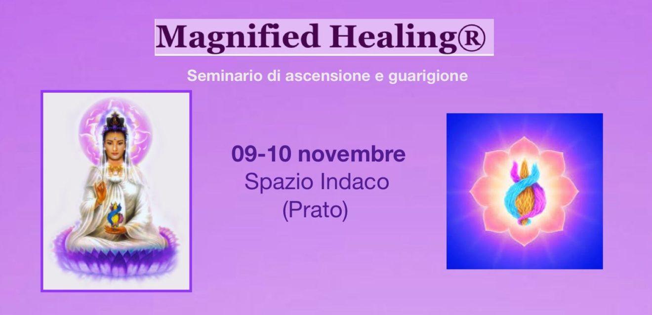 Magnified Healing seminario di 1a fase